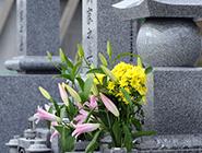 墓石・墓地・永代供養墓のご相談